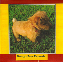 Bongo Boy Records